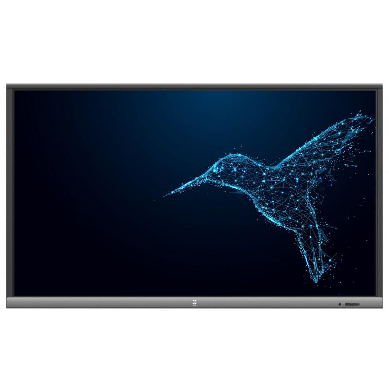 Monitor interaktywny Avtek TouchScreen 5 Lite 55